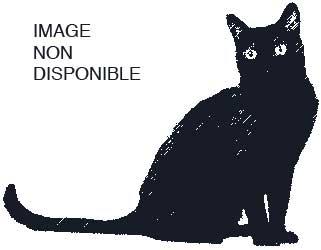 cat-xf