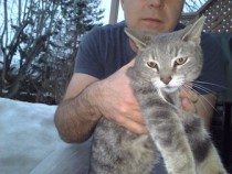 cat found in Tetreaultville