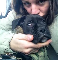 puppy lost in Terrebonne