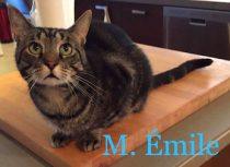 M. Emile
